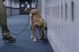 BPD Canine to visit JBHS